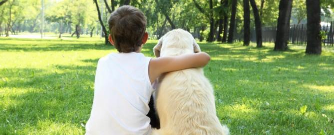 Pet Trusts in California